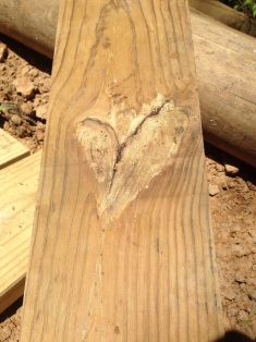 Heart woodgrain.