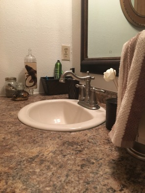 Best Bathroom decor! Such hard love.